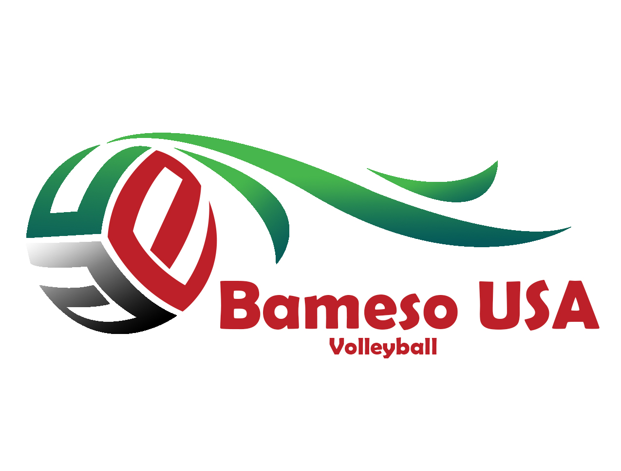 Bameso USA Volleyball